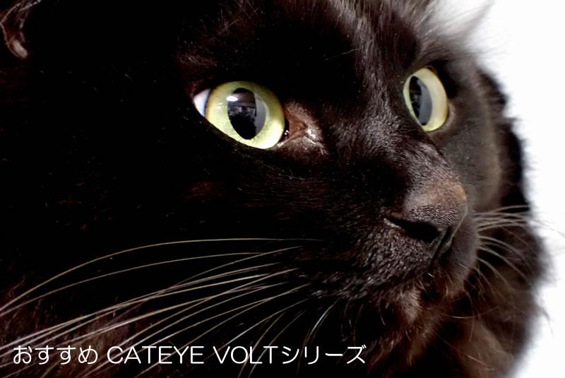 VOLTシリーズ|キャットアイおすすめライト2020年USB充電式