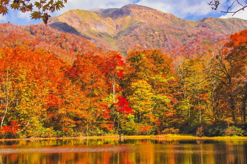 秋のブルべで気を付ける9つのコト