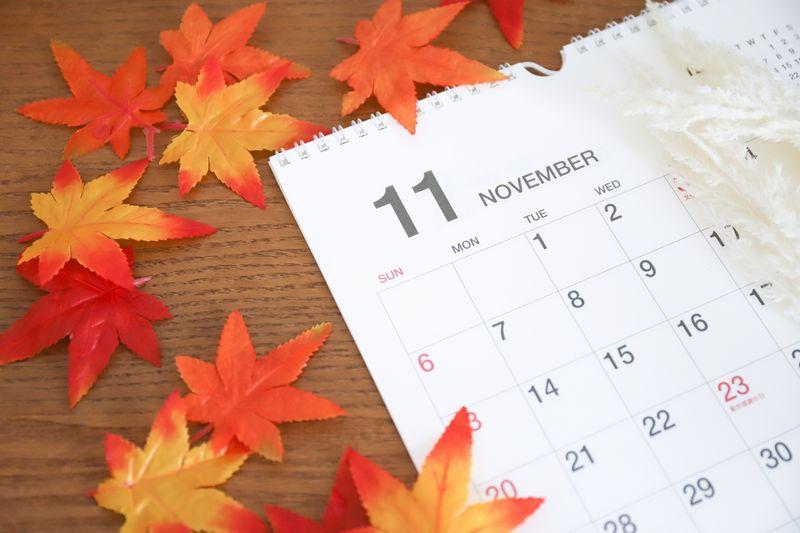 2021年11月開催の「国内ブルベ」:BRM一覧リスト